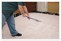 Seattle area rug steam cleaning